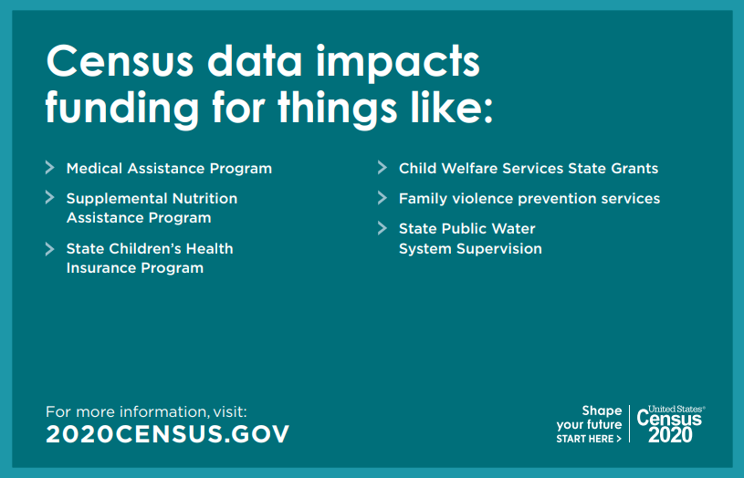 Services the 2020 US Census impacts