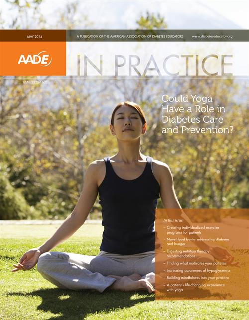 AADE in Practice Cover